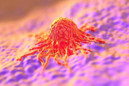 Photo of Высокий рост повышает риск развития рака