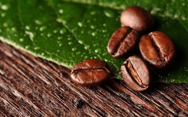 Photo of Кофе влияет на риск болезней Альцгеймера и Паркинсона
