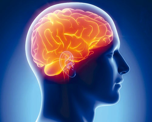 Photo of Названы самые полезные продукты для мозга