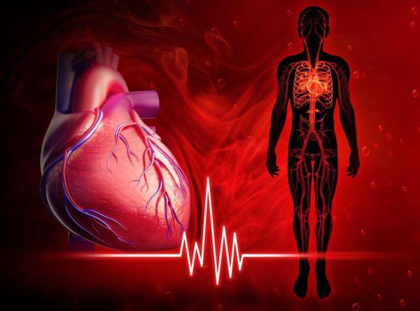 Photo of Брадикардия сердца: что это такое и как лечить, причины, симптомы