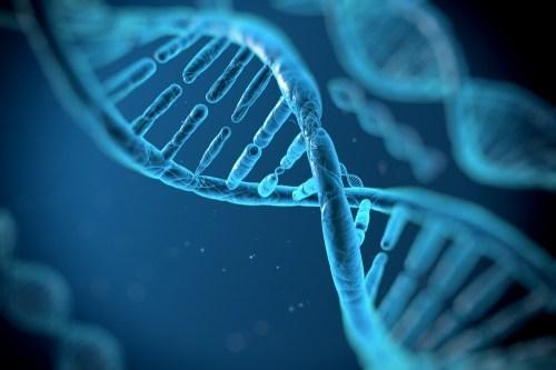 Photo of Медики выяснили, как гены влияют на развитие аутизма