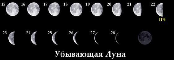 Photo of Убывающая луна в ноябре 2019 г: когда с какого числа (таблица)