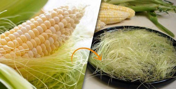 Photo of Кукурузные рыльца: полезные свойства и противопоказания, польза и вред